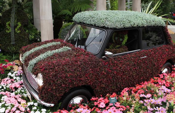 Где сейчас в москве проходит выставка цветов